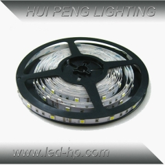 5050 30leds/m led strip